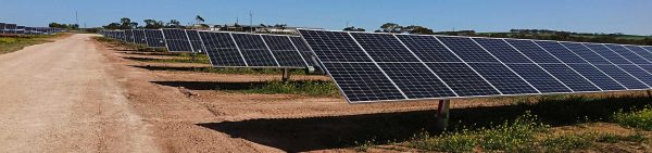 suntop-solar-farm-environmental-impact